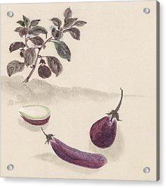 Eggplants Acrylic Print by Aged Pixel