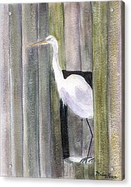 Egret At John's Pass Acrylic Print by Mickey Krause