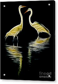 Egret Pair Acrylic Print by Jerry Fornarotto