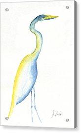 Egret's Glance Acrylic Print by Frank Bright