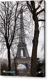 Eiffel Tower 4 Acrylic Print