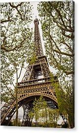 Eiffel Tower Acrylic Print by Carlos Caetano