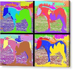 Eight Horses Acrylic Print by Patrick J Murphy