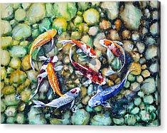 Eight Koi Fish Playing With Bubbles Acrylic Print by Zaira Dzhaubaeva