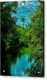 Acrylic Print featuring the photograph El Dorado Park Lake View by Joseph Hollingsworth