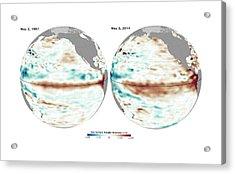 El Nino Comparison Acrylic Print by Nasa/jpl Ocean Surface Topography Team