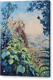 El Yunque Rainforest Puerto Rico Acrylic Print