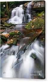 Elakala Falls #2 D30016020 Acrylic Print by Kevin Funk