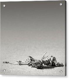 Eland Skeleton In Desert Acrylic Print