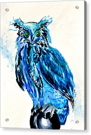 Electric Blue Owl Acrylic Print by Beverley Harper Tinsley