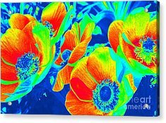 Electric Floral Acrylic Print