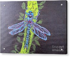 Acrylic Print featuring the painting Electrified Blue Dragonfly by Kimberlee Baxter