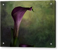 Acrylic Print featuring the photograph Elegance In Simplicity by Kristal Kraft