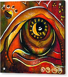 Elementals Spirit Eye Acrylic Print by Deborha Kerr
