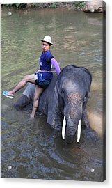 Elephant Baths - Maesa Elephant Camp - Chiang Mai Thailand - 011316 Acrylic Print by DC Photographer
