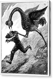 Elephant Bird Attack Acrylic Print