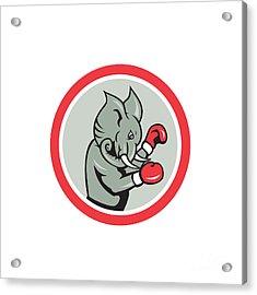 Elephant Boxer Boxing Circle Cartoon Acrylic Print by Aloysius Patrimonio
