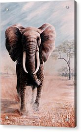 Acrylic Print featuring the painting Elephant Charge by DiDi Higginbotham