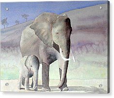 Elephant Family Acrylic Print by Laurel Best