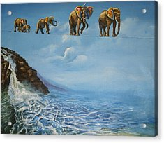 Elephant Family On A Tightrope Acrylic Print by Barbara Gray