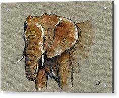 Elephant Head African Acrylic Print