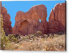 Acrylic Print featuring the photograph Elephant In The Rock by John M Bailey