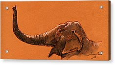 Elephant Indian Acrylic Print by Juan  Bosco