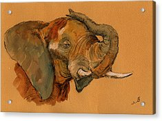 Elephant Acrylic Print by Juan  Bosco