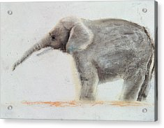 Elephant  Acrylic Print by Jung Sook Nam