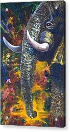 Elephant Acrylic Print by Kd Neeley