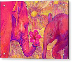 Elephant Love Acrylic Print by Jane Schnetlage
