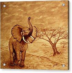 Elephant Majesty Original Coffee Painting Acrylic Print by Georgeta  Blanaru