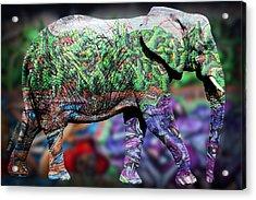 Elephant Acrylic Print by Mark Ashkenazi