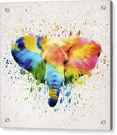 Elephant Splash Acrylic Print by Aged Pixel