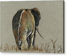 Elephant Walking Acrylic Print