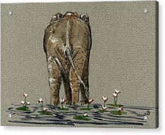 Elephant With Water Lilies Acrylic Print