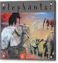 Acrylic Print featuring the mixed media Elephants - Art 4 Kids by Brooks Garten Hauschild