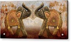 Elephants I Acrylic Print