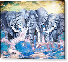 Elephants In The Tide Acrylic Print by Tara Richelle