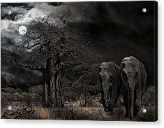 Elephants Of The Serengeti Acrylic Print by Daniel Hagerman