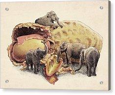 Elephant's Paradise Acrylic Print by Eric Fan