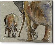Elephants Walking Acrylic Print