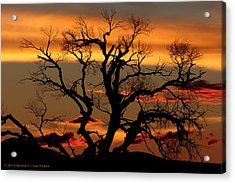 Acrylic Print featuring the photograph Elgin Sunset by Beverly Parks