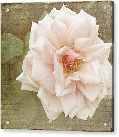 Elie Beauvillain Rose Textured Art Acrylic Print