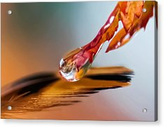 Elixir Of Faith Acrylic Print by Kenneth Haley