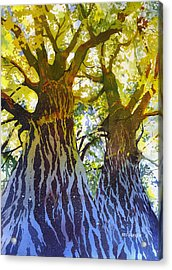 Elizabeth's Canopy Acrylic Print