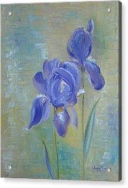 Elizabeth's Irises Acrylic Print by Judith Rhue