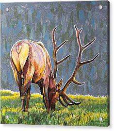 Acrylic Print featuring the painting Elk by Aaron Spong