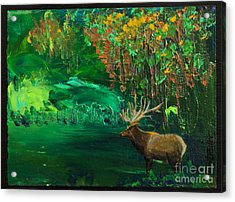 Elk Fall Acrylic Print by Tracy L Teeter
