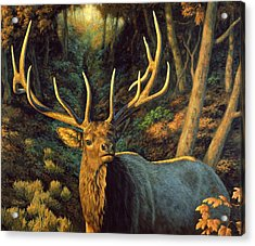 Elk Painting - Autumn Majesty Acrylic Print by Crista Forest